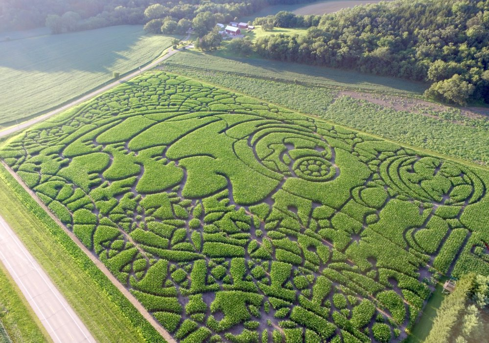 Maze with Farm
